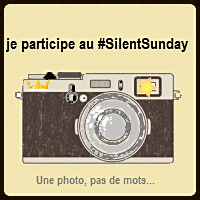 Silen t Sunday
